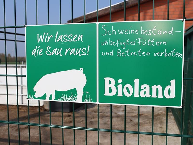 freilandhaltung_schweine_zaun