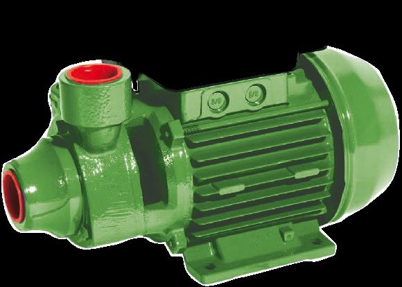 Kreiselpumpe P 50 BRASS, 2850 min-1, 230 V